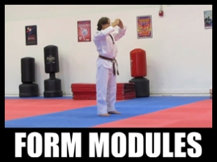 Form Modules